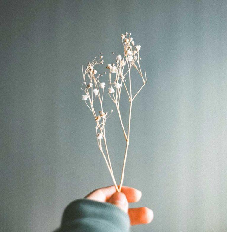 I love flowers – Anna